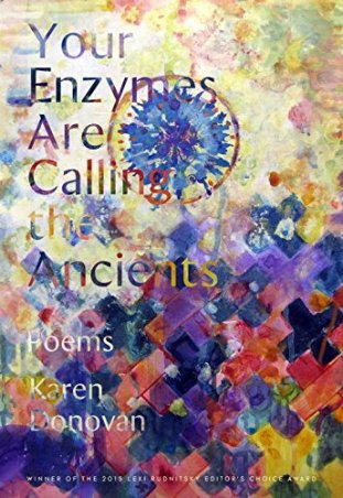 enzymes cover